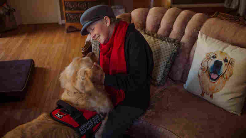 The Hope And Hype Of Diabetic Alert Dogs