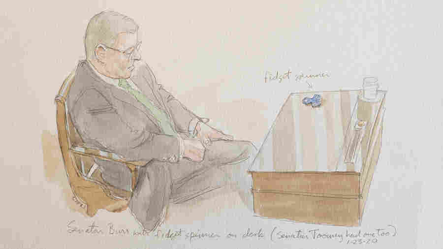 Sketch Artist Captures 'Something Unusual' At Senate Trial
