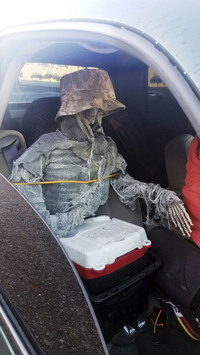 This Thursday, Jan. 23, 2020, photo provided by the Arizona Department of Public Safety shows a dummy skeleton found after a state trooper traffic stop of a 62-year-old man for an HOV lane violation in Phoenix. (Arizona Department of Public Safety via AP)