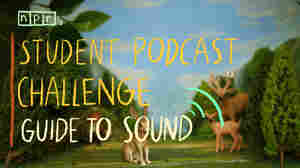 On The Hunt For Great Sound: A Student Podcast Challenge Video Guide