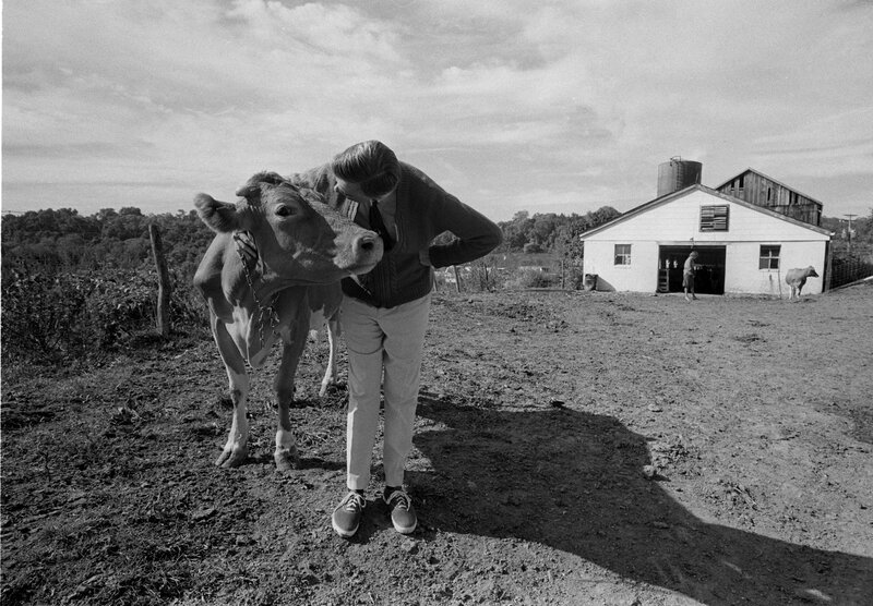 Mister Rogers Photographer Captured Fred Rogers In His Own Neighborhoods The Picture Show Npr