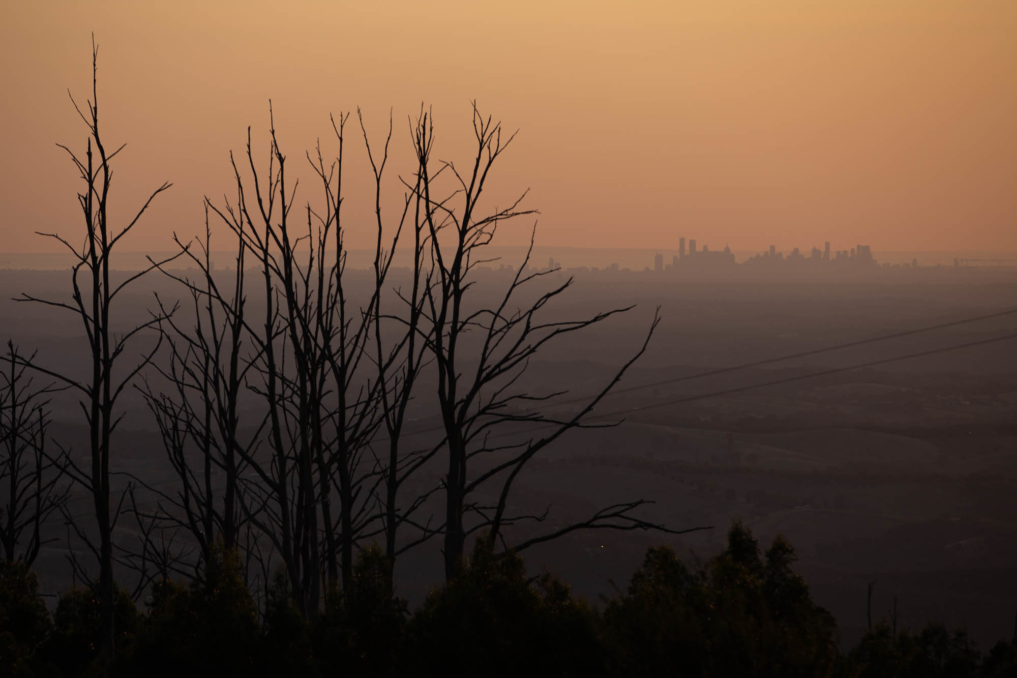With Australia's Hillsides Stripped Bare By Fire, Scientists Rush To Predict Mudflows