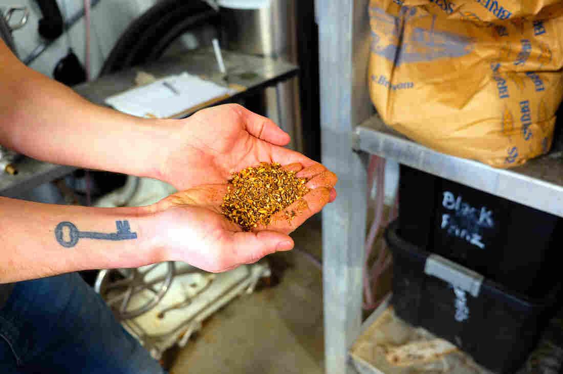 Westlake Legal Group 20200124_barley_tripledogbrewing_havremontana_rachelcramer_custom-b2d562871c7476a87de68205c79d4b1148158609-s1100-c15 Beer Waste Saves Montana Town $1 Million On Water Treatment