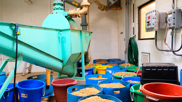 The wastewater treatment facility in Havre, Mont., collects the spent barley from a local brewery to feed the facility