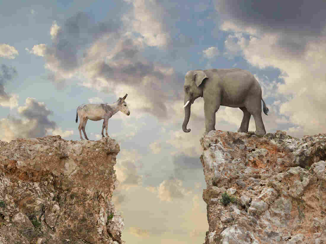 A donkey and an elephant stare at each other across a chasm.