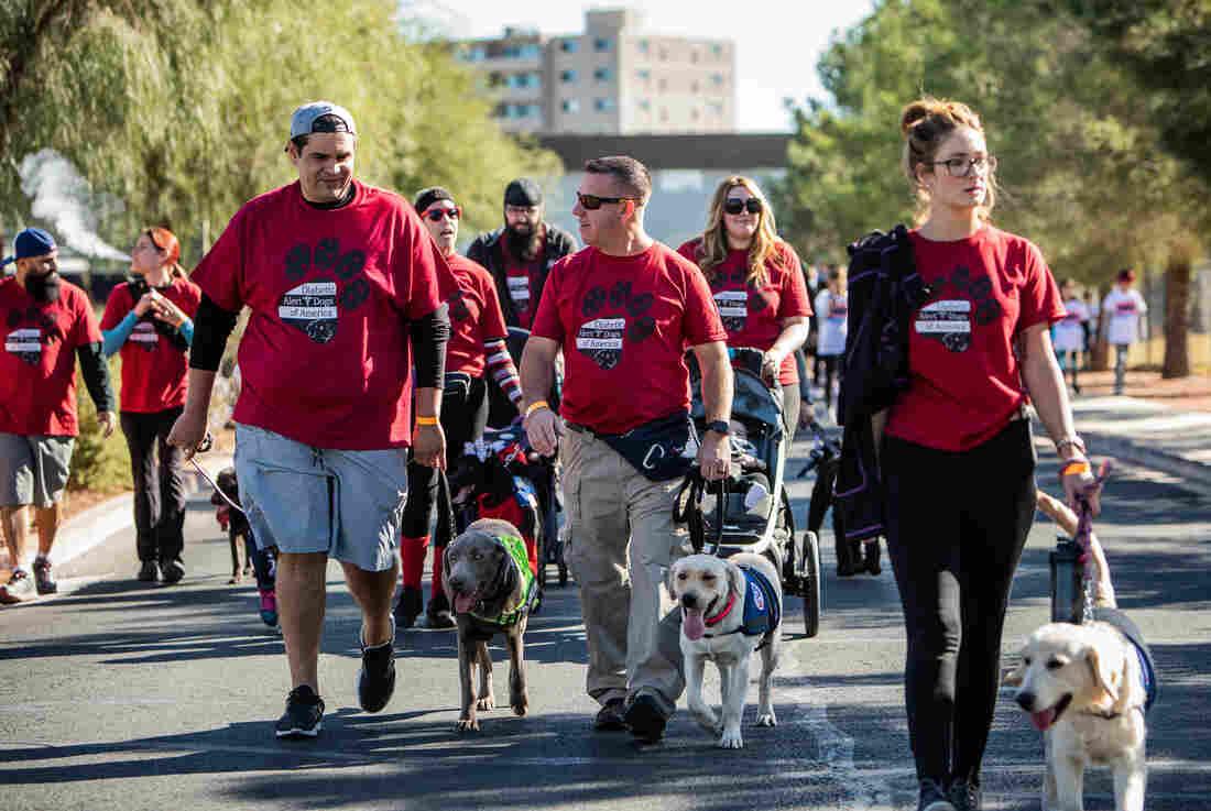 Westlake Legal Group diabetes-alert-dogs-4_custom-f028fc39f4a2ebfc0868fff000dfc7b30c7579cb-s1100-c15 The Hope And Hype Of Diabetic Alert Dogs