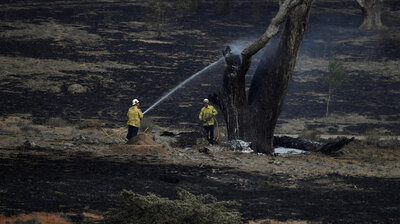 Officials In Australia's New South Wales Celebrate: 'All Fires Are Now Contained'