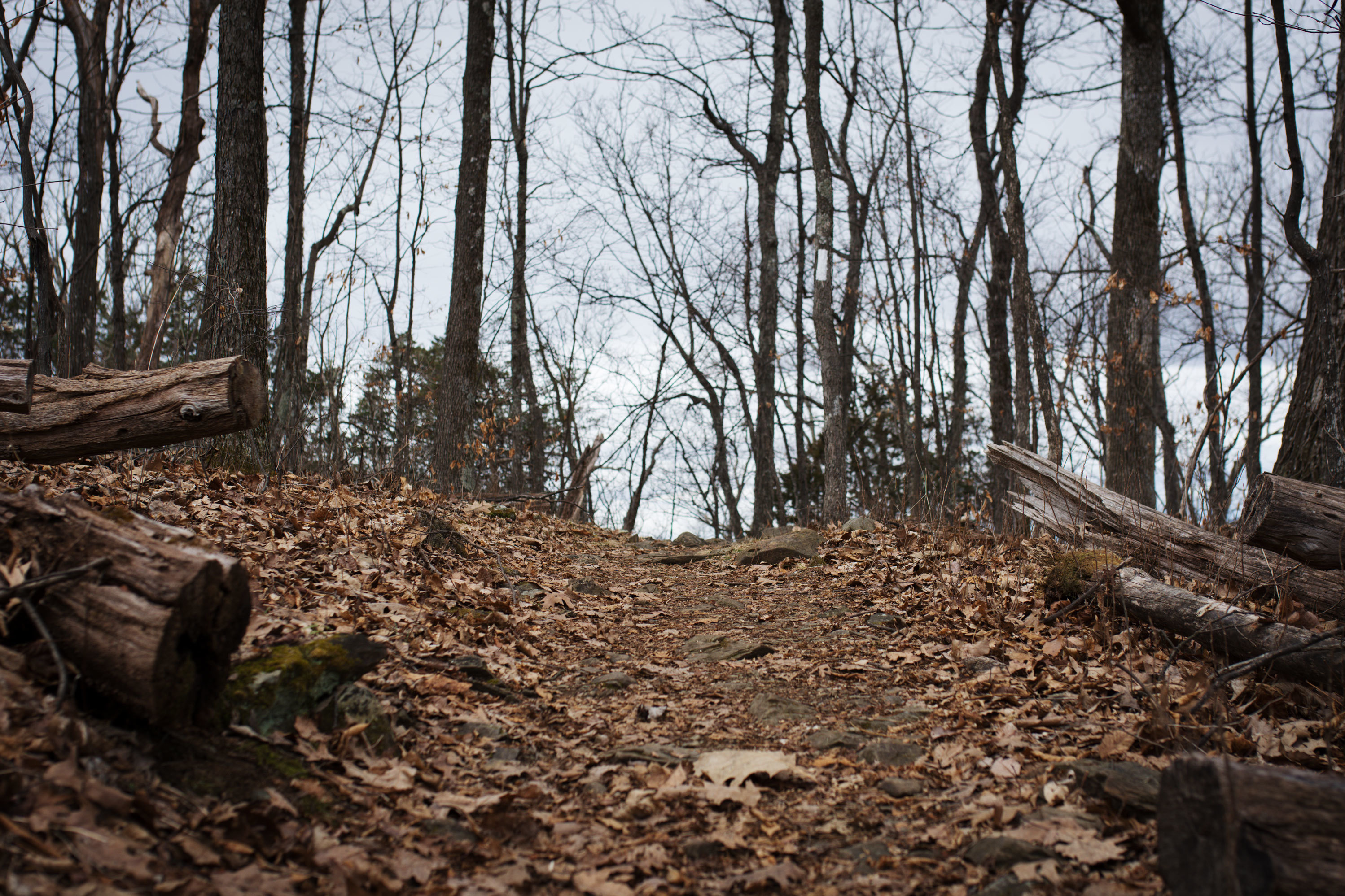 Supreme Court Pipeline Fight Could Disrupt How The Appalachian Trail Is Run