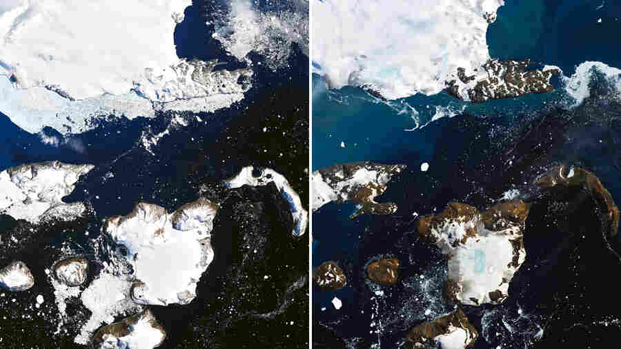 'Antarctica Melts,' NASA Says, Showing Effects Of A Record Warm Spell