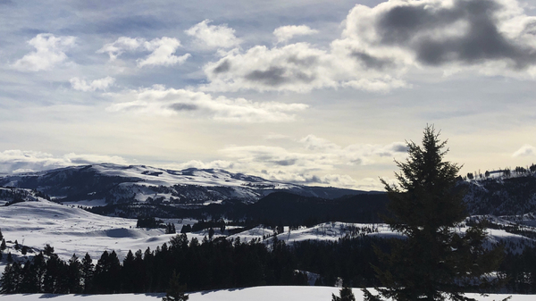 Yellowstone, Grand Teton, Great Smoky Mountains Close Over Coronavirus Fears