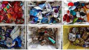 FRONTLINE And NPR Investigate The Plastics Industry