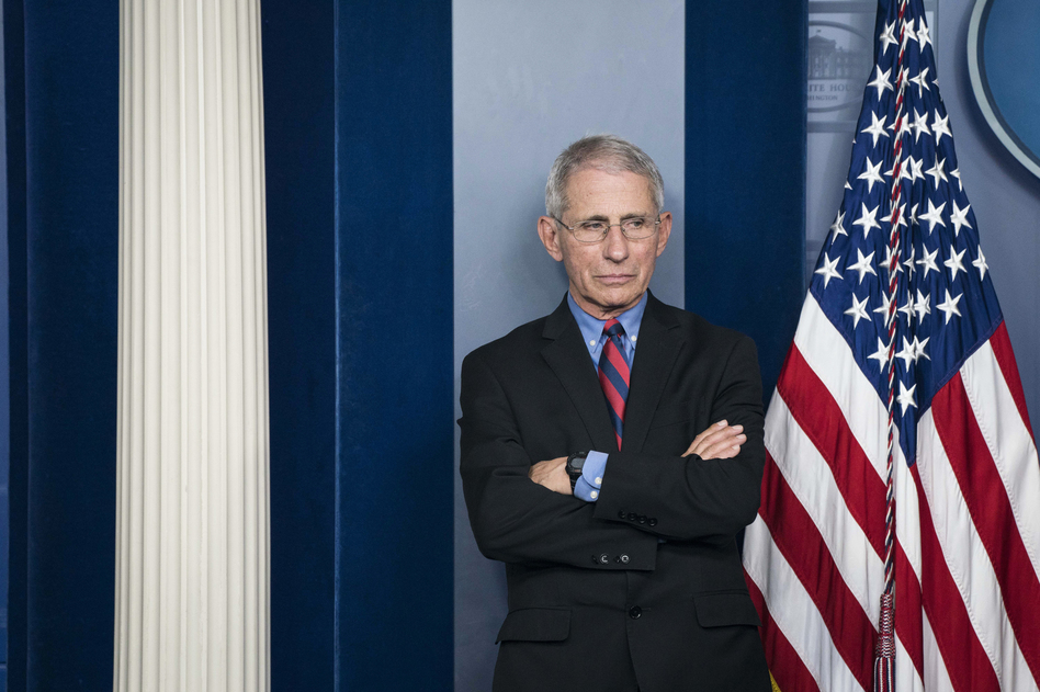 Anthony Fauci, director of the National Institute of Allergy and Infectious Diseases, has been a fixture at most of the president's daily coronavirus task force press briefings. (Sarah Silbiger/Bloomberg via Getty Images)