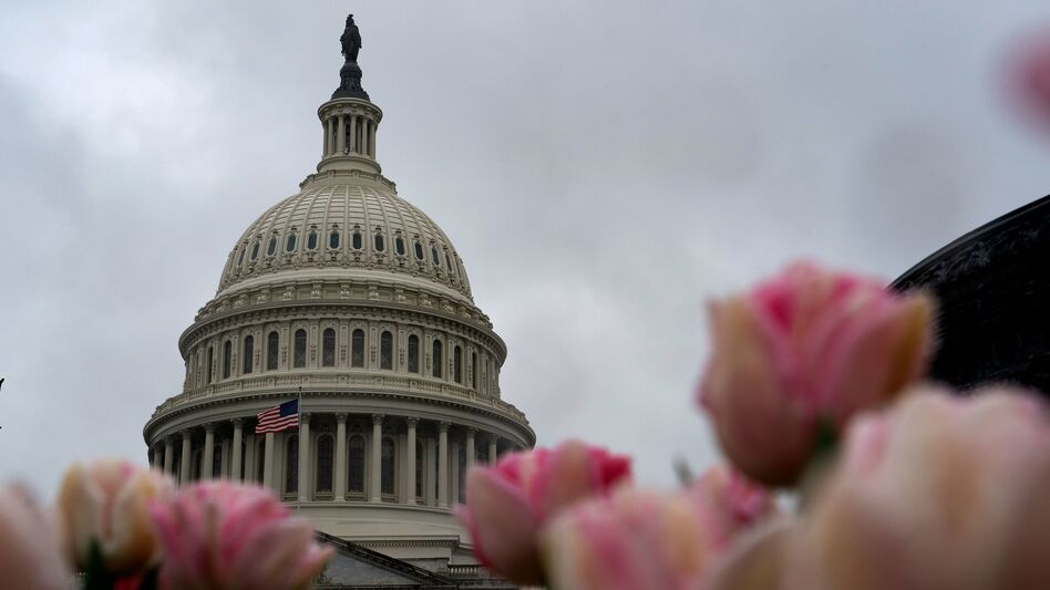 The U.S. Capitol building on March 25, the same day the Senate unanimously passed a historic $2 trillion deal in response to the coronavirus crisis. (Alex Edelman/AFP via Getty Images)