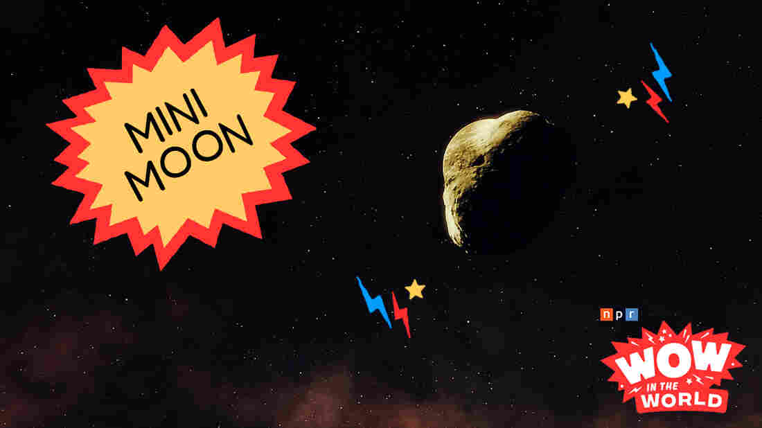 It's a Bird! It's A Plane! It's a....MINI MOON orbiting around Planet Earth!? That's right! For the past year or more, we here on earth, have had TWO moons! Join Mindy and Guy Raz as they go galaxy gazing to witness this wonder of wow firsthand! It's the Who, What, When, Where, Why, How and Wow in the World of the Mini Moon!