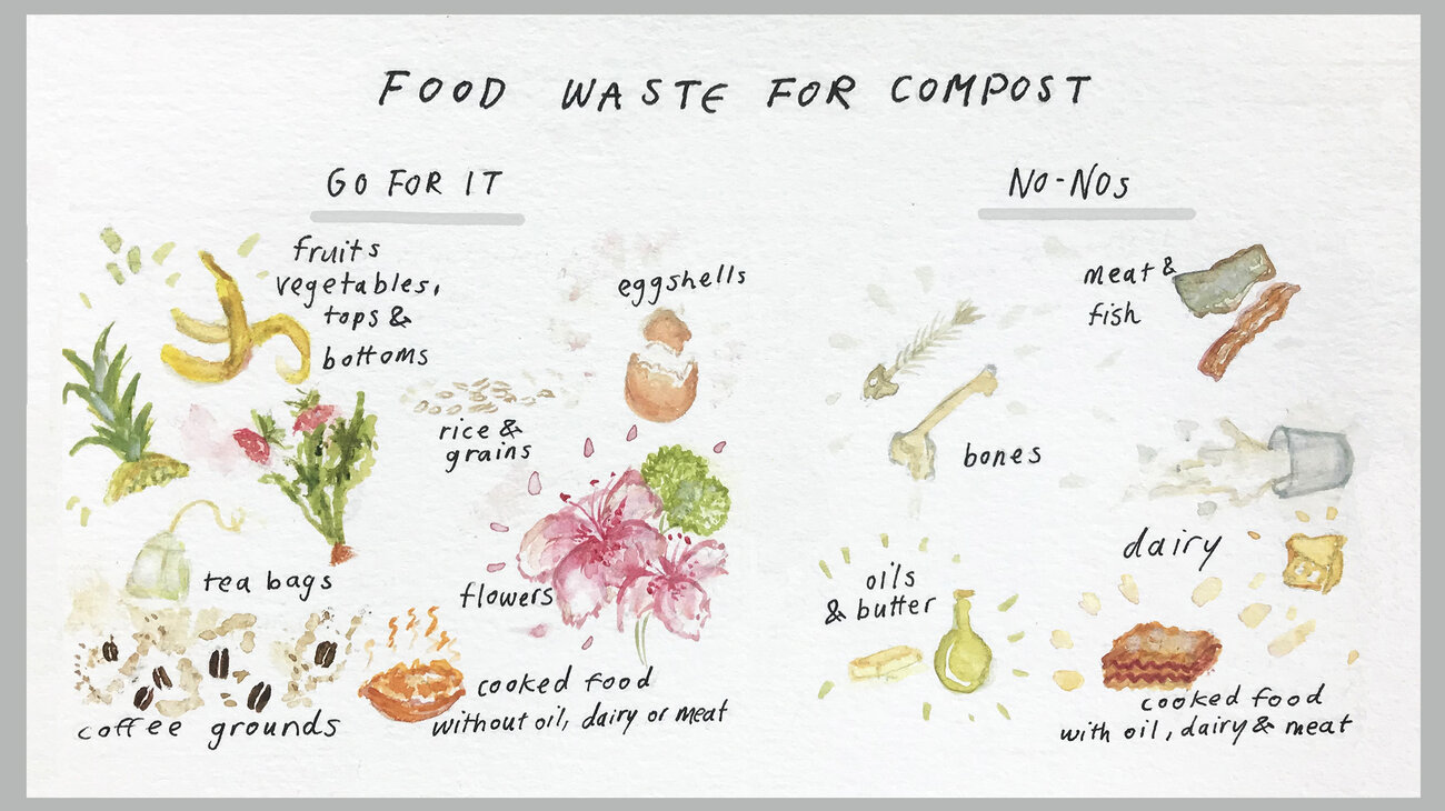The food scraps you can and can't include in your home compost.