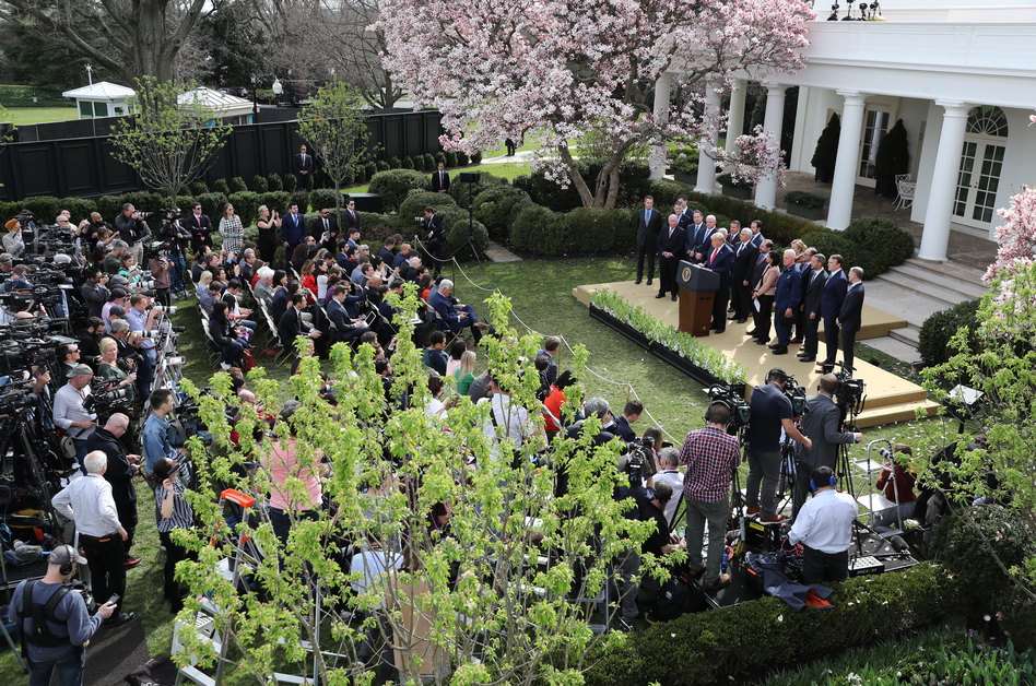 President Trump speaks during a news conference about the coronavirus pandemic in the Rose Garden of the White House on March 13. (Chip Somodevilla/Getty Images)