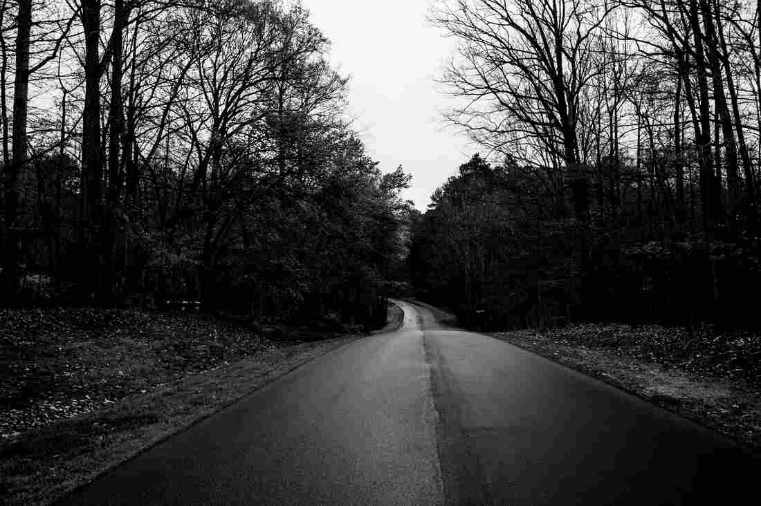 Kasia: Roads surrounding the forest served as boundaries; I would walk every day to the end of the forest, turn around and come back, hoping that soon we would be walking together.