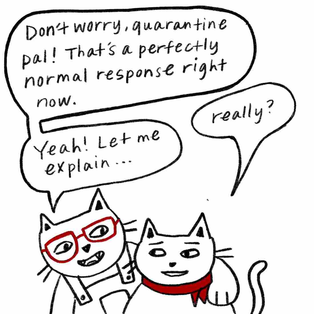 """Don't worry, quarantine pal!"" says Glasses Cat. ""That's a perfectly normal response right now."" ""Really?"" Bandanna Cat says. ""Yeah, let me explain ..."""