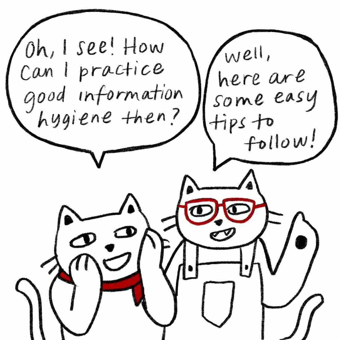 """Oh, I see!"" says Bandanna Cat. ""How can I practice good information hygiene then?"" ""Well, here are some easy tips to follow,"" answers Glasses Cat."
