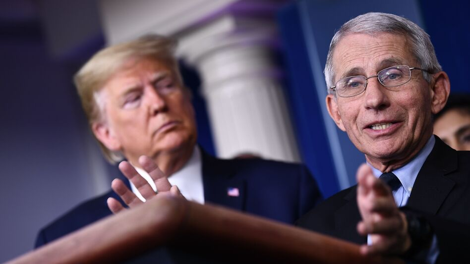 Dr. Anthony Fauci, a member of President Trump's coronavirus task force, directs the National Institute of Allergy and Infectious Diseases, which had convened the panel of experts. (Brendan Smialowski/AFP via Getty Images)