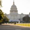 Coronavirus Scrambles 2020 Fight For Congress