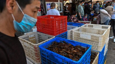 U.S. Pressures China To Close Wet Markets Thought To Be Source Of COVID-19