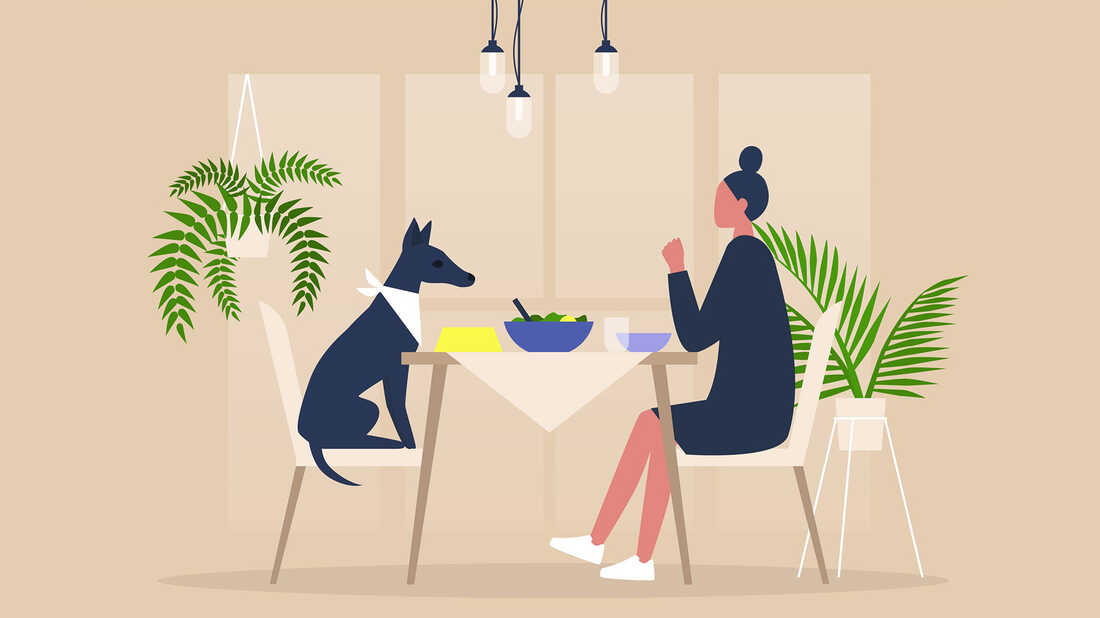 The TED Radio Hour: Meditations On Loneliness