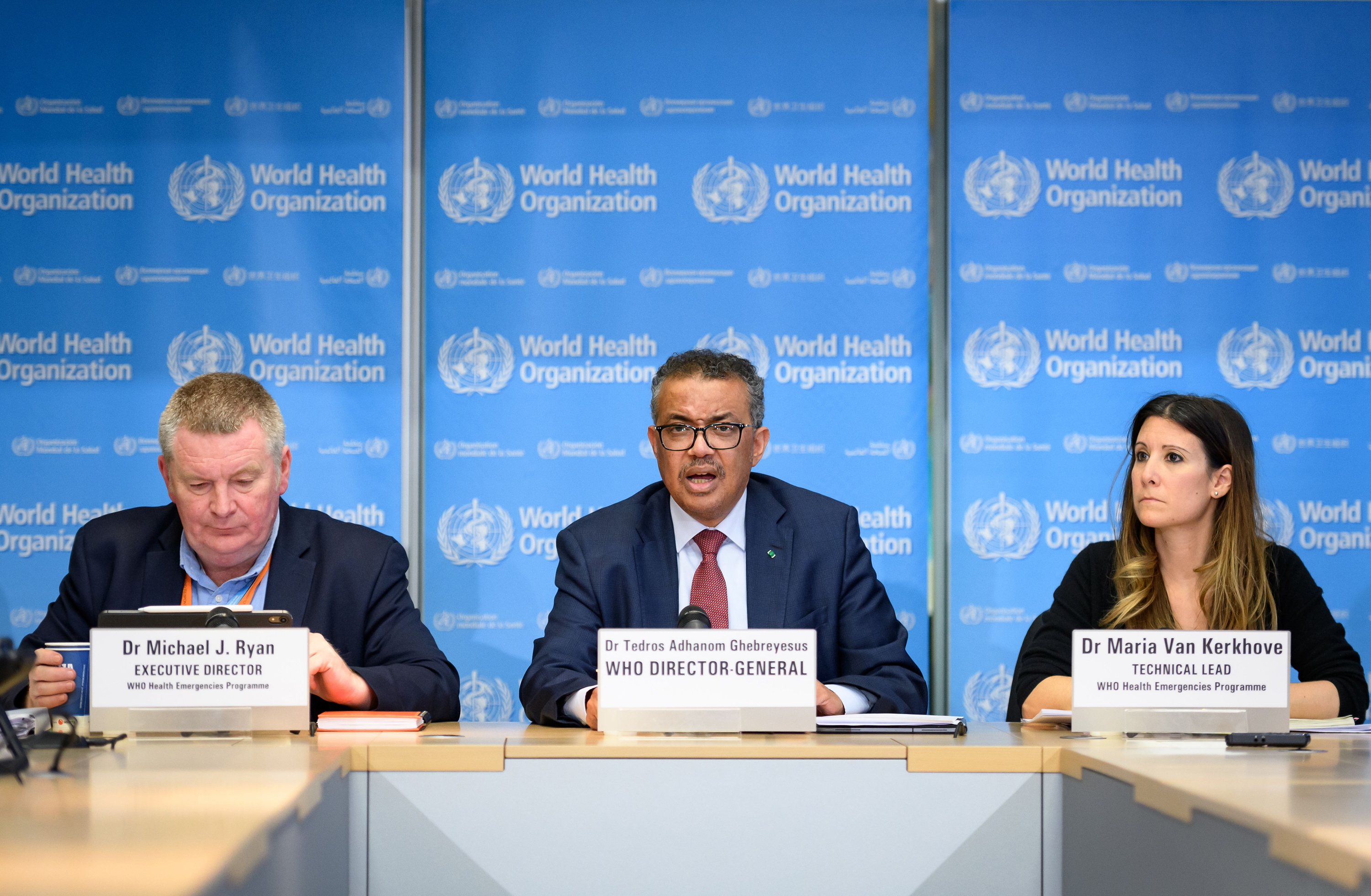 World Health Organization: Its History, Its Mission, Its Role In ...