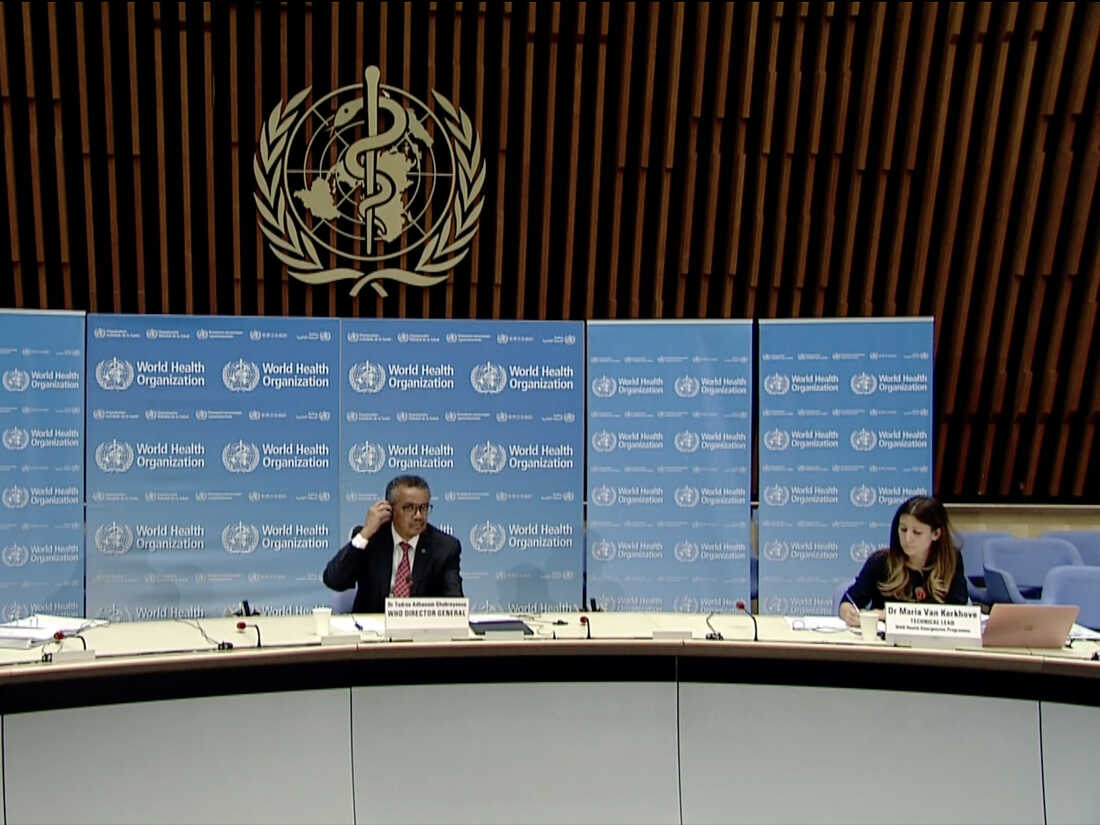 World Health Organization  Health Emergencies Programme Director Michael Ryan, WHO Director-General Tedros Adhanom Ghebreyesus and WHO Technical Lead Maria Van Kerkhove attending a WHO virtual news briefing on COVID-19. (Photo by -/AFP via Getty Images)