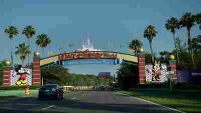 Man Arrested For Camping At Abandoned Disney World Island