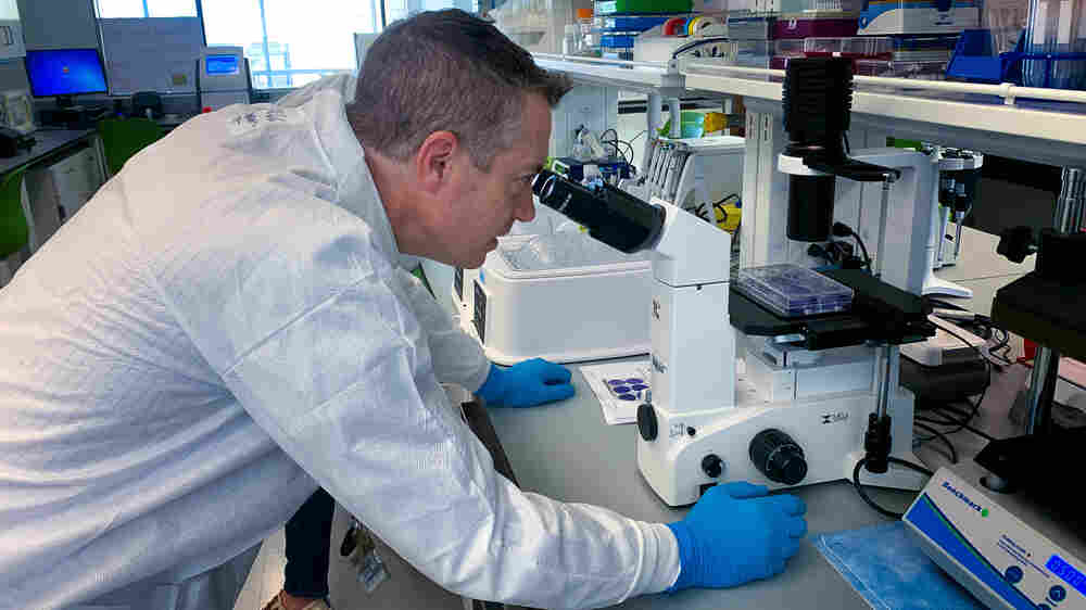 Virologist Spends His Days 'Hunting The Thing That Wants To Hunt Us'