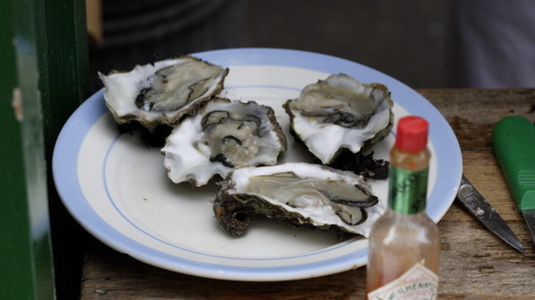 As sales to restaurant clients dried up, oyster farmer Peter Stein had to adapt or perish. Now, he