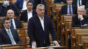 European Parliament Lawmakers Demand Punishment For Hungary Over Emergency Powers