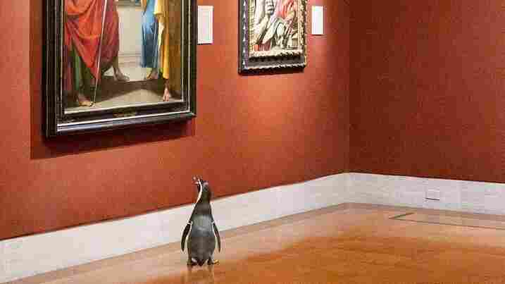 WATCH: Missouri Penguins Enjoy 'Morning Of Fine Art' At Local Museum