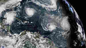 Hurricane Season Will Be Above Average, NOAA Warns