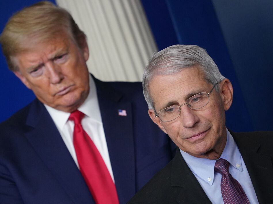 Flanked by President Trump, Dr. Anthony Fauci speaks during a coronavirus task force briefing last month at the White House. (Mandel Ngan/AFP via Getty Images)