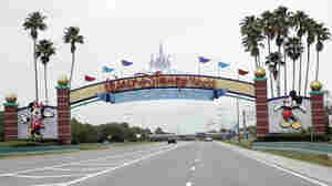 Disney World And Other Florida Theme Parks Outline Reopening Plans