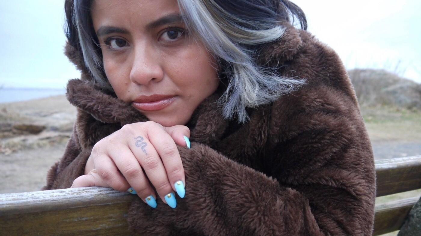 Author Karla Cornejo Villavicencio Talks 'The Undocumented Americans'