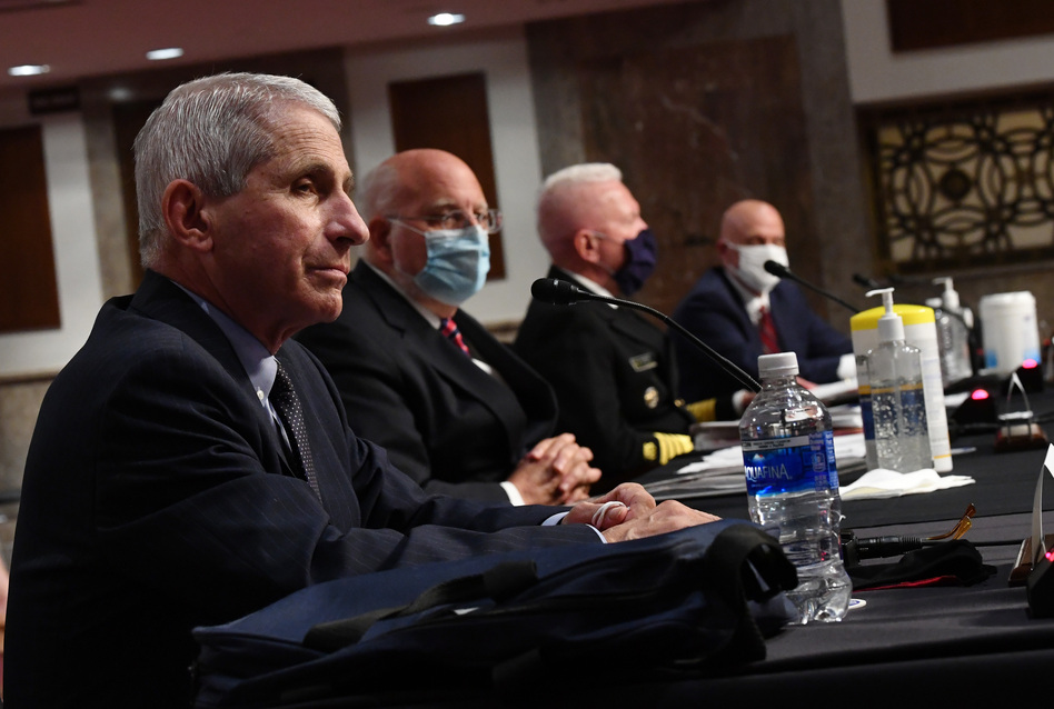 Dr. Anthony Fauci and other top government health officials testify before the Senate health and education committee on Tuesday. (Kevin Dietsch/Pool/AFP via Getty Images)