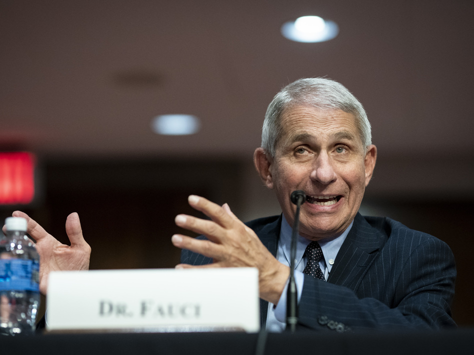 Dr. Anthony Fauci, director of the National Institute of Allergy and Infectious Diseases, speaks during a Senate Health, Education, Labor and Pensions Committee hearing on Tuesday. (Al Drago/Pool/Getty Images)