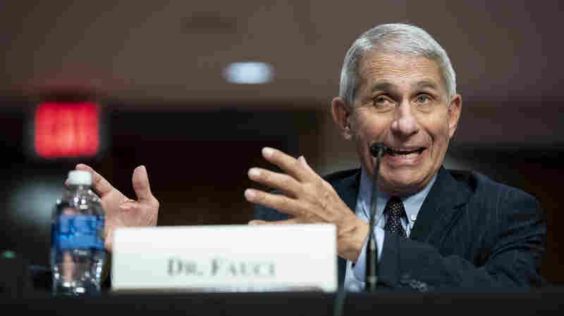 Fauci: Mixed Messaging On Masks Set U.S. Public Health Response Back