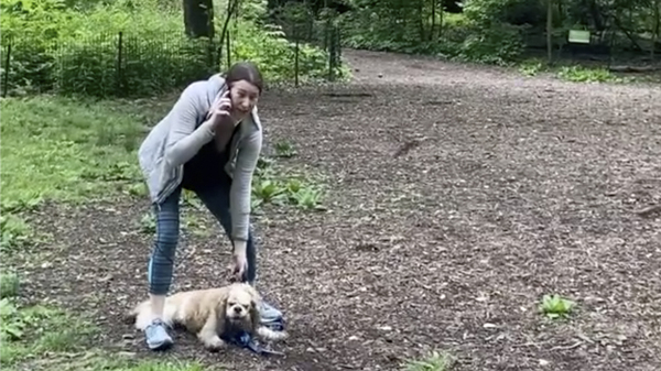 The Manhattan district attorney says he will prosecute Amy Cooper, who called police after a black man asked her to leash her dog in New York