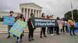 Federal Court Orders Trump Administration To Accept New DACA Applications
