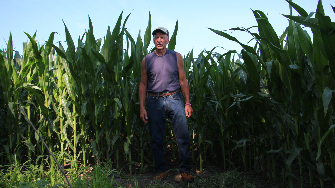 Big-Money Investors Gear Up For A Trillion-Dollar Bet On Farm Land