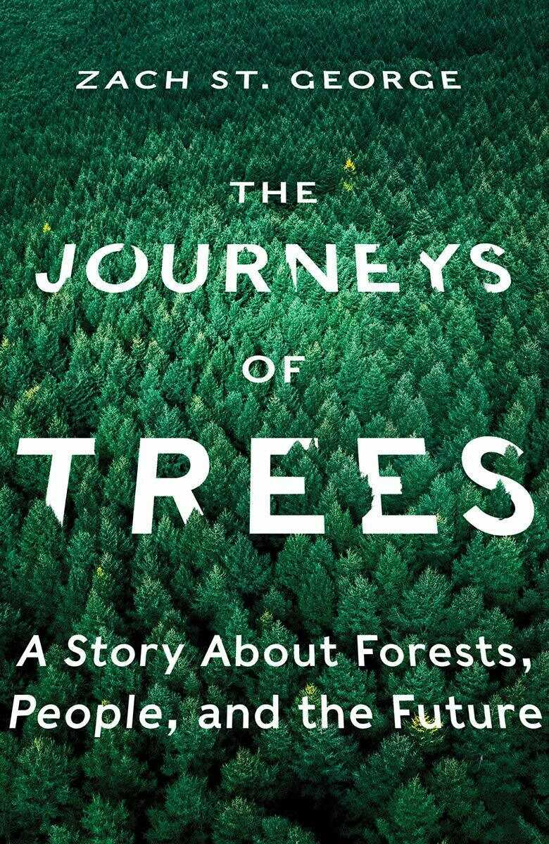 The Journeys of Trees by Zach St. George