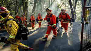 Coronavirus Pandemic Sidelines California's Inmate Firefighters