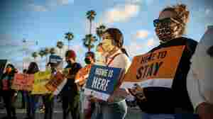 Trump Administration Refuses To Accept New DACA Applicants Despite Court Rulings