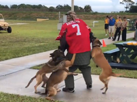 A screenshot of a video posted on Twitter by Billy Corben shows a K-9 demonstration with a man wearing a Colin Kaepernick jersey.
