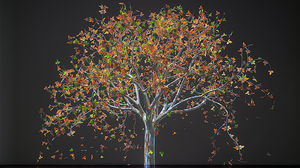 'It Lowers Your Blood Pressure': Spend A Few Moments With These Hypnotic Trees