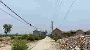 In Rural China, Villagers Say They're Forced From Farm Homes To High-Rises